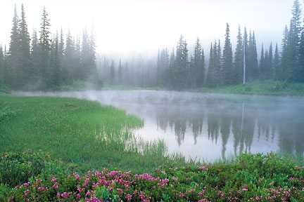 Mist Rising from Reflection Lake